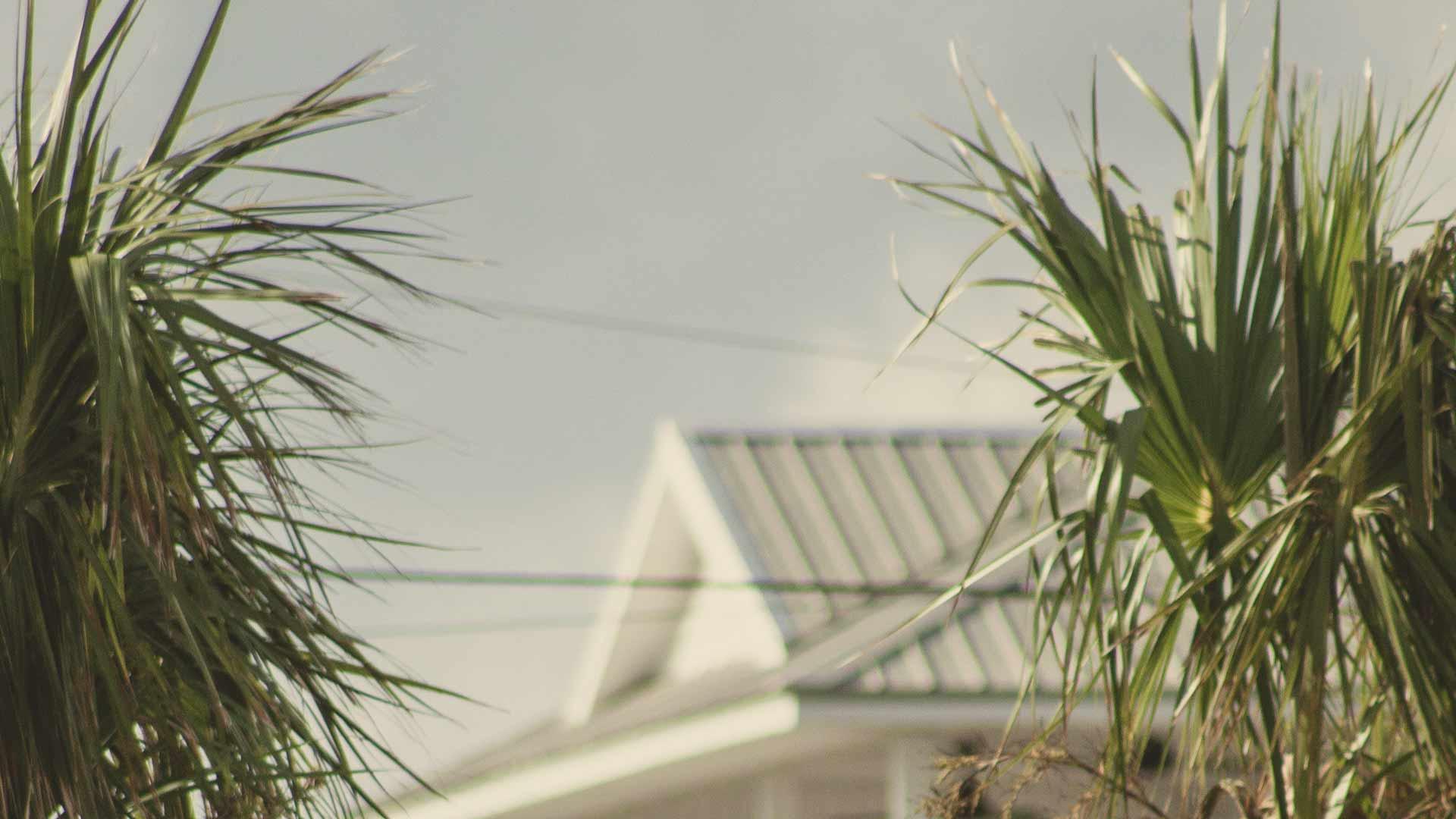 Haus vor Palmen in der Sonne